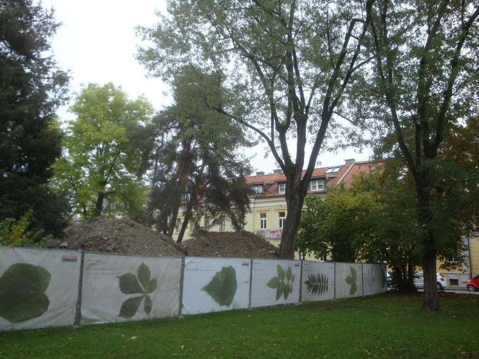 Waisenhauskaserne: Liebloser Umgang mit Park und Bäumen – Lebensqualität schwindet