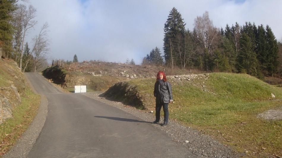 Bebauung Felsnestweg: Erschließung ohne rechtsgültige Widmung ist für Grüne Skandal
