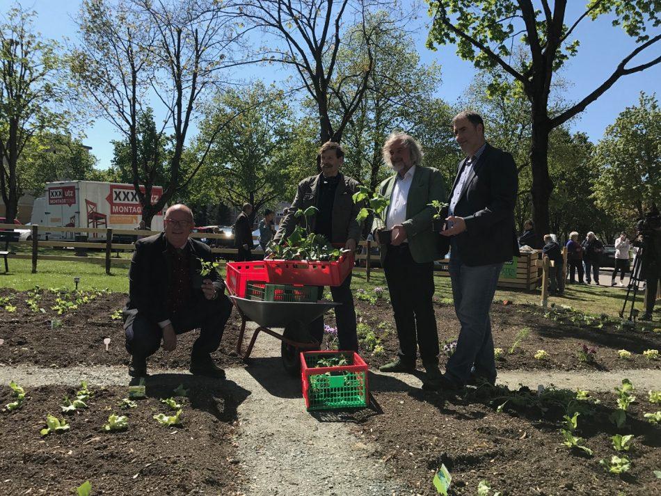 Zweites Urban Gardening-Projekt gestartet