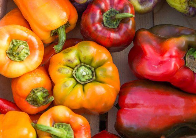 Bio-Essen macht schlau: Anteil weiter erhöhen!